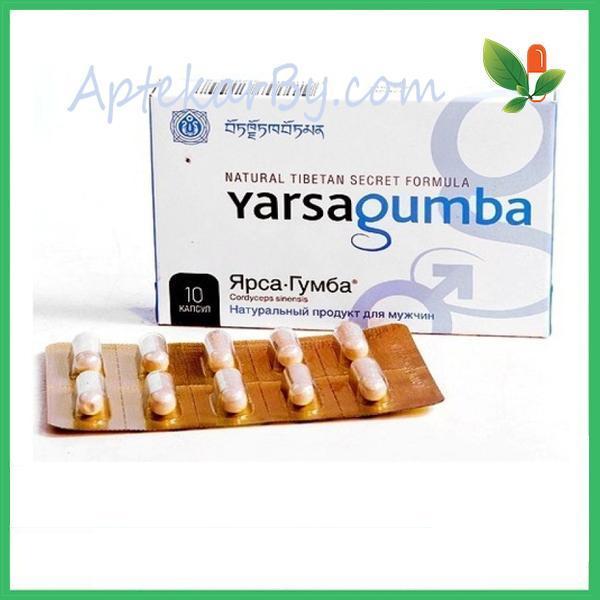Ярсагумба препарат для потенции из Малайзии